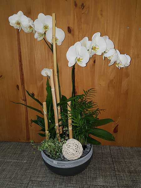 Bar à fleurs Montalieu - Composition en vert et blanc